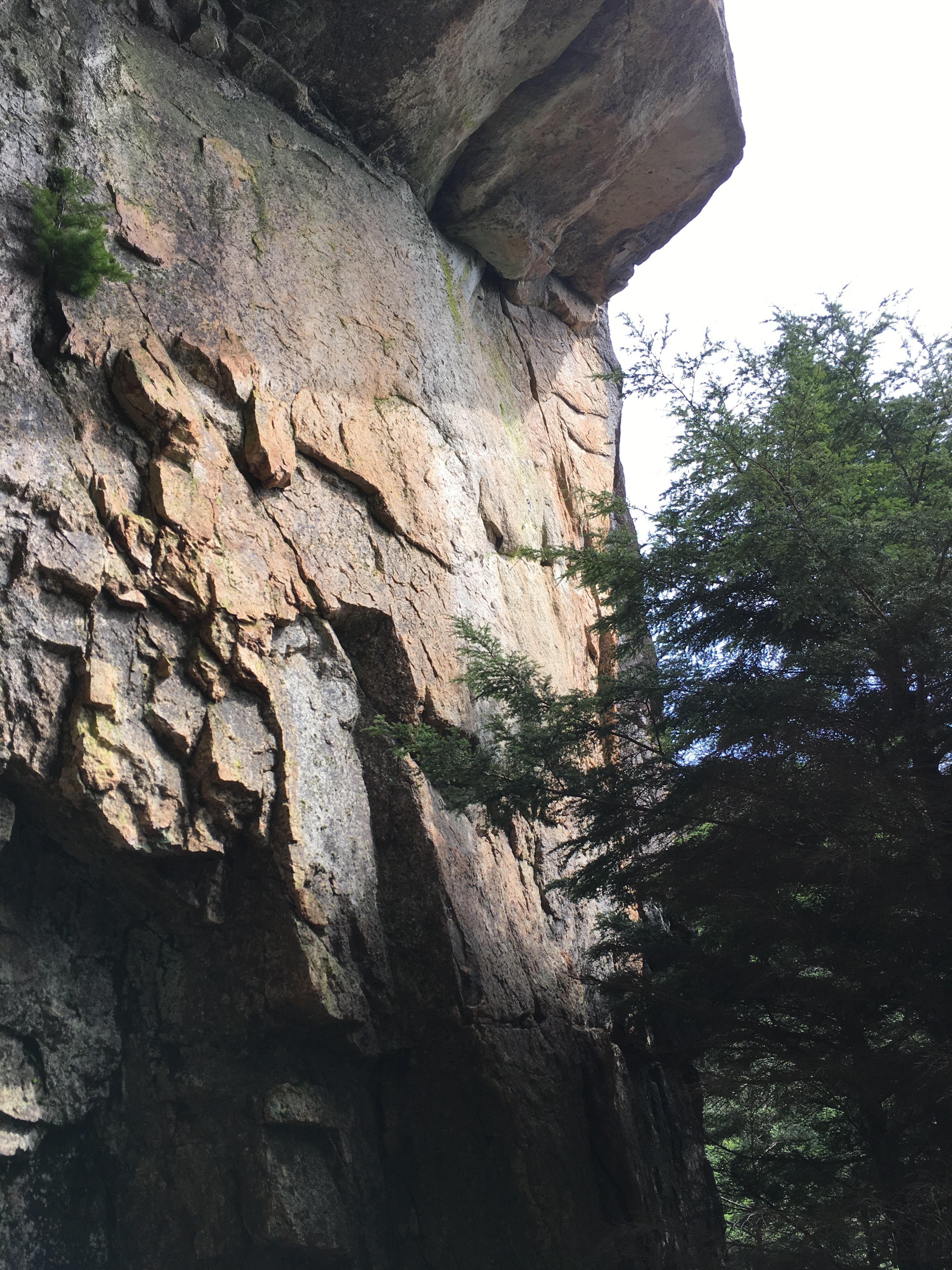 瑞牆で簡単なマルチ継続登攀、アレアレア1P目、アプリオリ