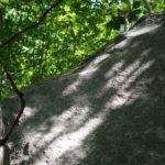 小川山「伴奏者」の初登者・再登者リスト