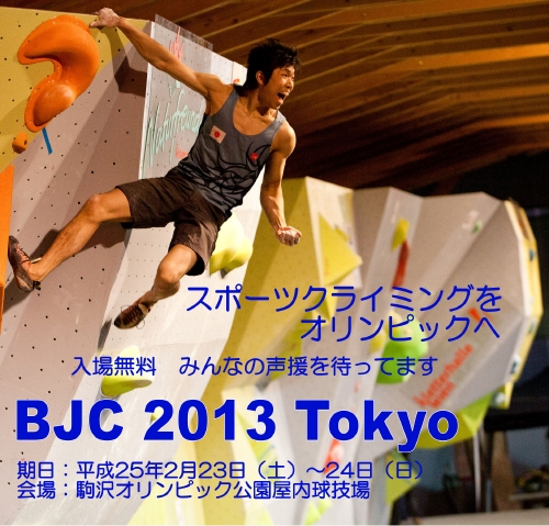 BJC2013