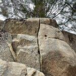 のんびり登ったり、たくさん登ったり 21年3~4月